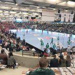 Die LIQUI MOLY EHF Cup Finals in Göppingen 2017
